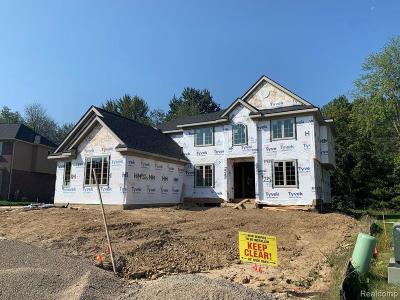 Novi Single Family Home For Sale: 47639 Alpine Dr