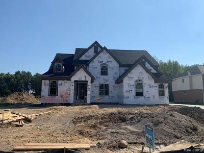 Novi Single Family Home For Sale: 47702 Alpine Dr