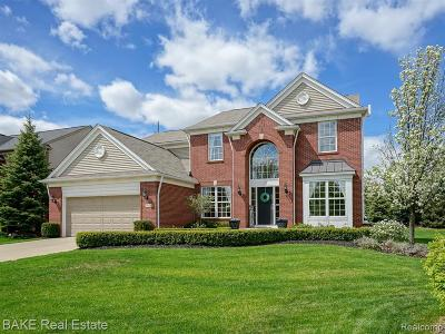 Northville Single Family Home For Sale: 48836 Freestone Dr