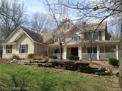 Chelsea Single Family Home For Sale: 6755 Woodvine Dr