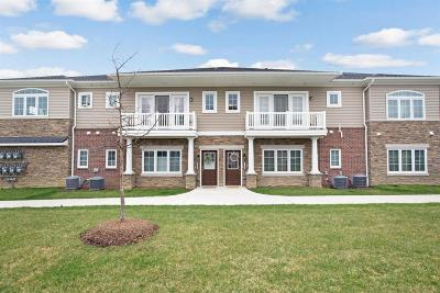 Ann Arbor Condo/Townhouse For Sale: 5639 Arbor Chase Dr