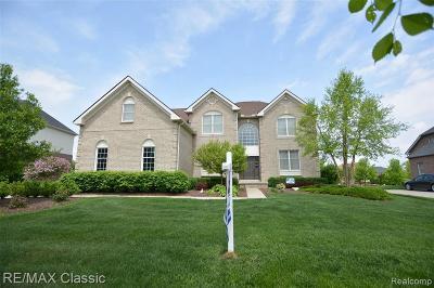 Novi Single Family Home For Sale: 24791 Nepavine Dr