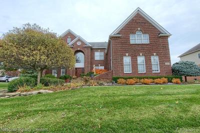 Novi Single Family Home For Sale: 26604 Glenwood Dr