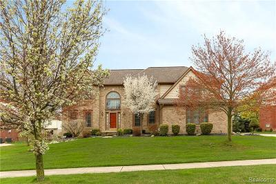 Plymouth Single Family Home For Sale: 9075 Countrywood Dr