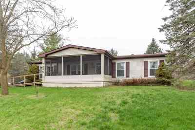 Manitou Beach Single Family Home Contingent - Financing: 7360 Hallenbeck