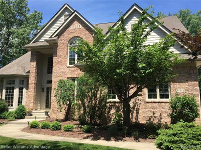 Northville Single Family Home For Sale: 49590 Deer Run