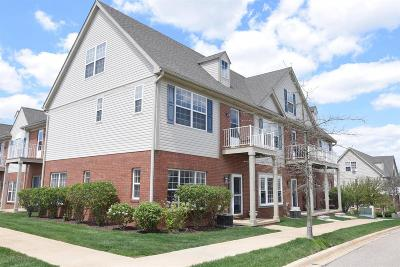 Ann Arbor Condo/Townhouse For Sale: 3006 Cloverly
