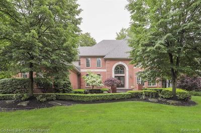 Novi Single Family Home For Sale: 22580 Halifax Ln