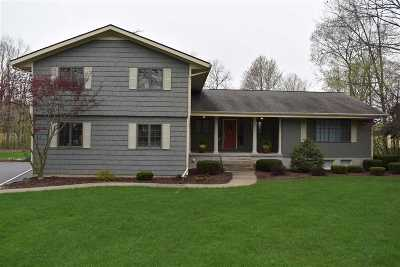 Single Family Home Contingent - Financing: 2548 Coachlite Dr