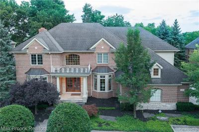 Lake Orion Single Family Home For Sale: 71 Greenan Ln
