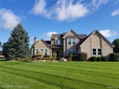 South Lyon Single Family Home For Sale: 12629 Cedar View Ln