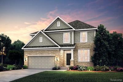 Novi Single Family Home For Sale: 28172 Hummingdale Cir
