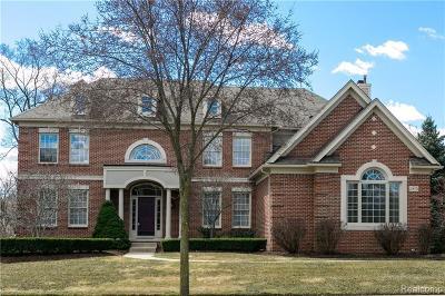Novi Single Family Home For Sale: 23051 Argyle Crt