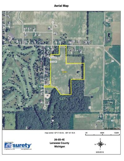 Tecumseh MI Residential Lots & Land For Sale: $250,000