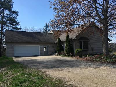Brooklyn MI Single Family Home For Sale: $464,900