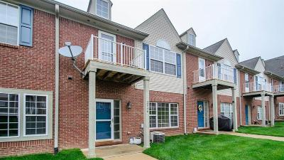 Ann Arbor Condo/Townhouse For Sale: 2046 Cloverly Ln