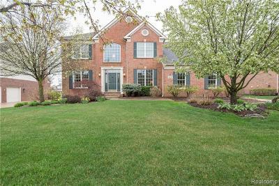 Northville Single Family Home For Sale: 46319 Pinehurst Dr