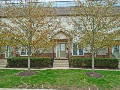 Ann Arbor Condo/Townhouse For Sale: 936 Wall St