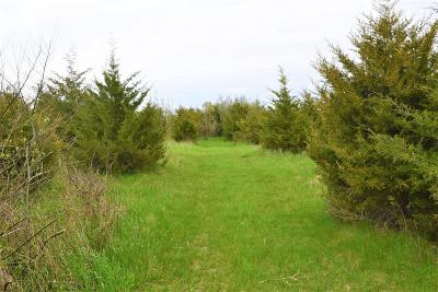 Grass Lake Residential Lots & Land For Sale: 14405 S Francisco Rd