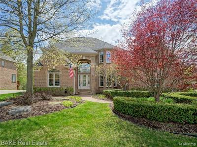 Northville Single Family Home For Sale: 44017 Deep Hollow Cir
