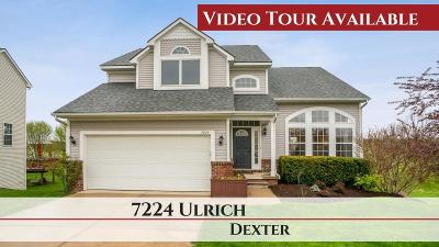 Dexter Single Family Home For Sale: 7224 Ulrich