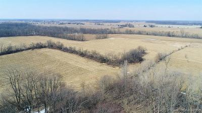 Adrian MI Residential Lots & Land For Sale: $299,900
