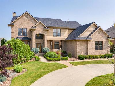 South Lyon Single Family Home For Sale: 54868 Grenelefe Cir E