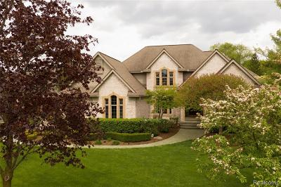 Northville Single Family Home For Sale: 18134 Shelley Pond Crt