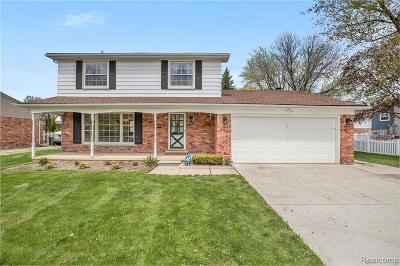 Livonia Single Family Home For Sale: 35734 6 Mile Rd