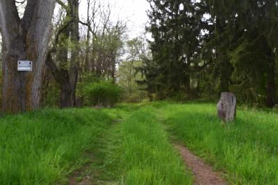 Grass Lake MI Residential Lots & Land For Sale: $99,900