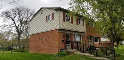 Ann Arbor Condo/Townhouse For Sale: 3091 Wolverine