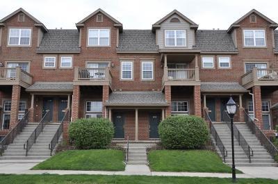 Ann Arbor Condo/Townhouse For Sale: 2875 Barclay Way