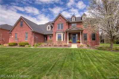 Canton Single Family Home For Sale: 49122 Castleside Dr