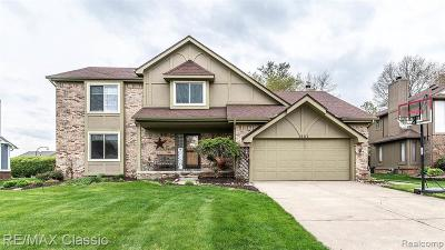 Wixom Single Family Home For Sale: 1981 Downham Dr