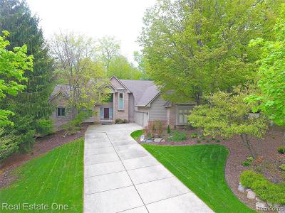Northville Single Family Home For Sale: 43556 Scenic Ln