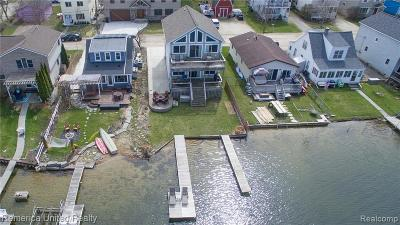 Brighton Single Family Home For Sale: 8885 Lagoon Dr