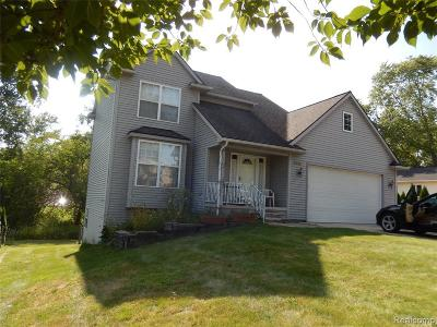 Novi Single Family Home For Sale: 2330 Austin Dr