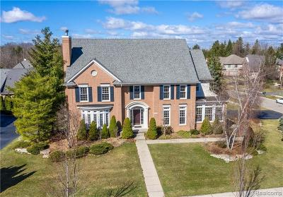 West Bloomfield Single Family Home For Sale: 6538 Crest Top Dr