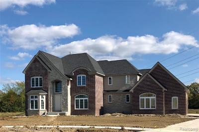 Novi Single Family Home For Sale: 51153 Chamberlin Crt