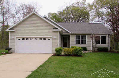Single Family Home For Sale: 10337 Thornapple Drive