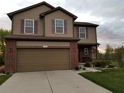 Ann Arbor Single Family Home For Sale: 4459 Knollcrest Dr