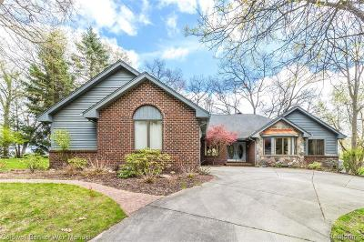 Lake Orion Single Family Home For Sale: 1131 Nakomis Trl