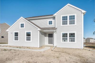 Washtenaw County Single Family Home For Sale: 9518 Neumann Cir