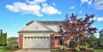 Canton Single Family Home For Sale: 47093 Sherstone Dr.
