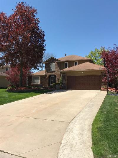 Farmington Hill Single Family Home For Sale: 35034 Valley Forge Dr