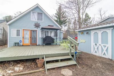 Single Family Home For Sale: 9590 Roundlake Blvd
