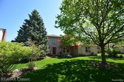 Novi Single Family Home For Sale: 24314 Roma Ridge Dr