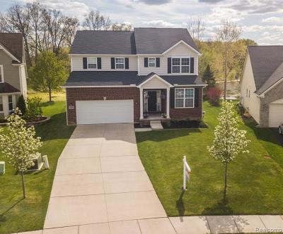 South Lyon Single Family Home For Sale: 10850 Ridgestone Dr