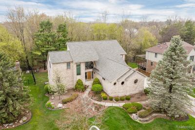 Livonia Single Family Home For Sale: 17441 Ellen Dr