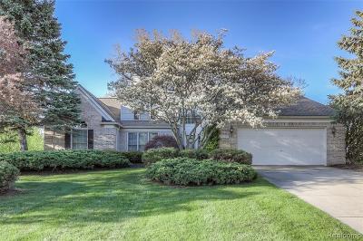 Lake Orion Single Family Home For Sale: 1259 Lake Shore Blvd